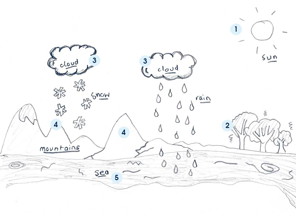 math worksheet : water cycle diagram related keywords  suggestions  water cycle  : Water Cycle Worksheet For Kindergarten